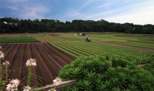 Agricultural Well Installation Company in NH